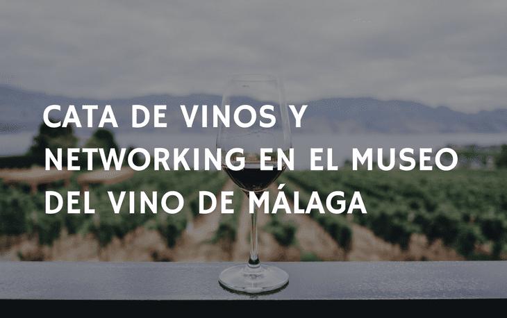 cata vinos museo malaga